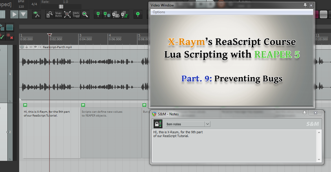 REAPER used in a subtitling workflow. The text items were created with the help of the Dynamic Split tools.